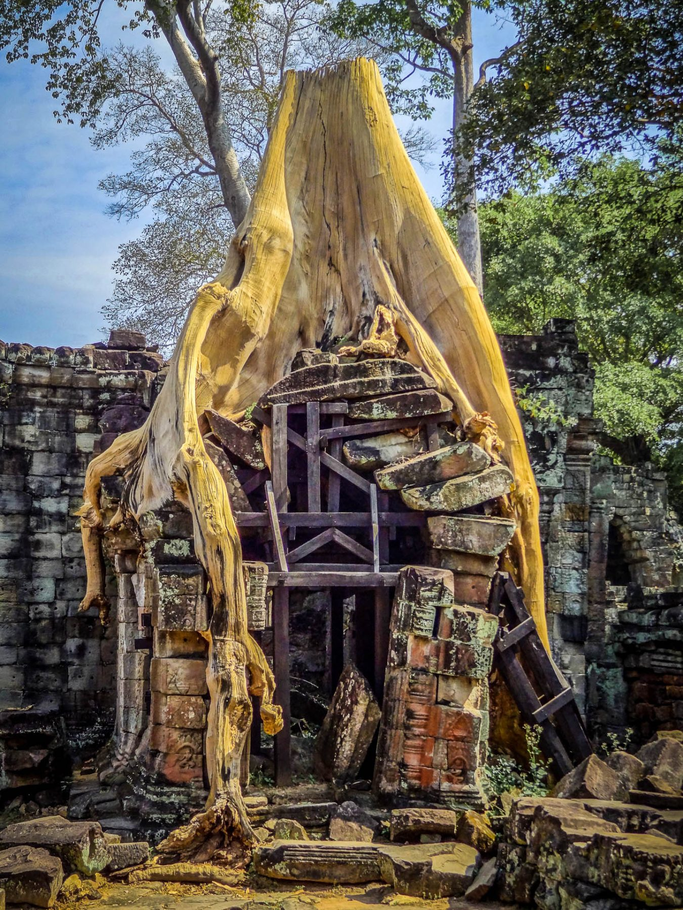 Power  Home naowel abt puissance temple preah kahn siem riep cambodge